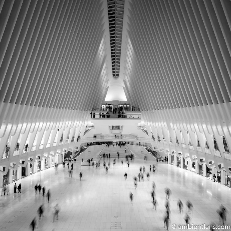 Westfield World Trade Center (BW SQ)