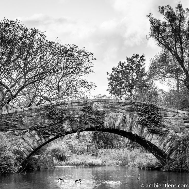 Gapstow Bridge and The Pond 2 (BW SQ)