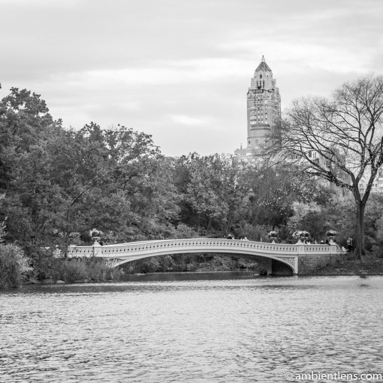 Bow Bridge in the Fall 1 (BW SQ)