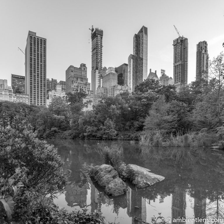 The Pond in Central Park, Manhattan, New York 1 (BW SQ)