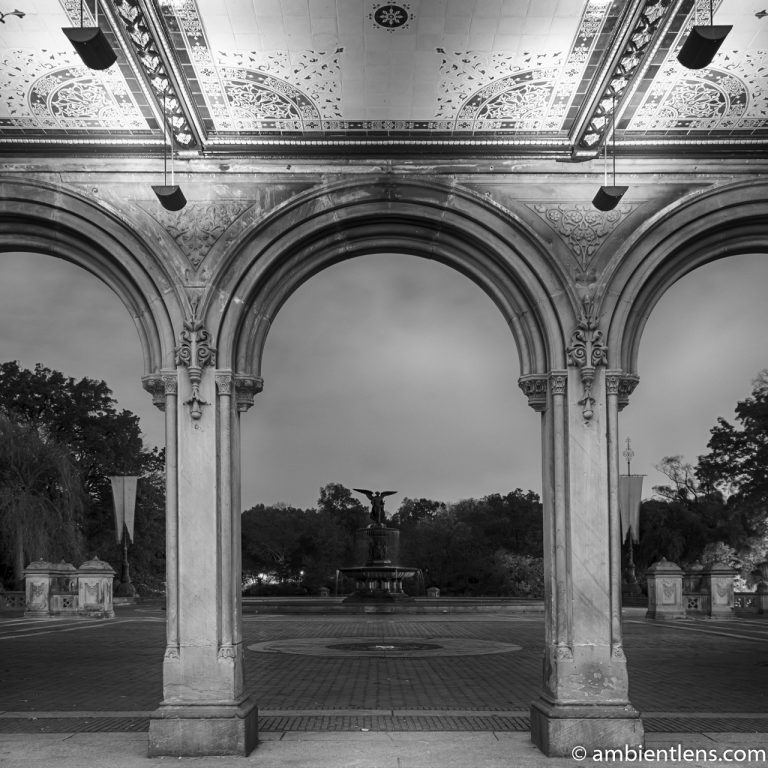 Looking Out Central Park's Bethesda Terrace (BW SQ)
