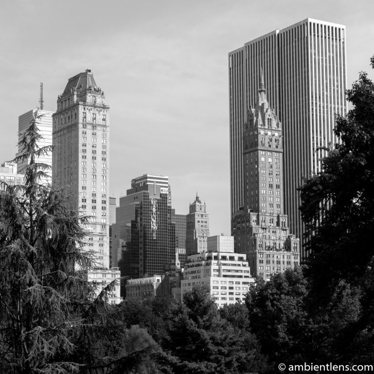 View of Buildings from South Central Park, New York 1 (BW SQ)