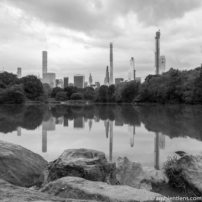 Reflection on The Lake at Central Park 8 (BW SQ)
