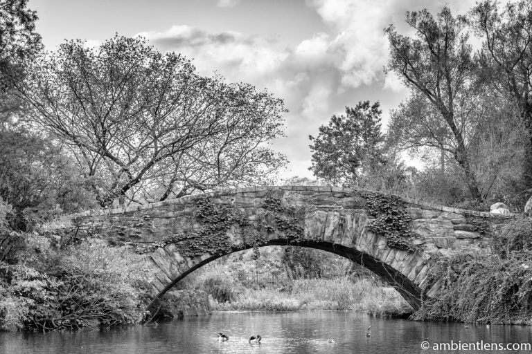 Gapstow Bridge and The Pond 2 (BW)