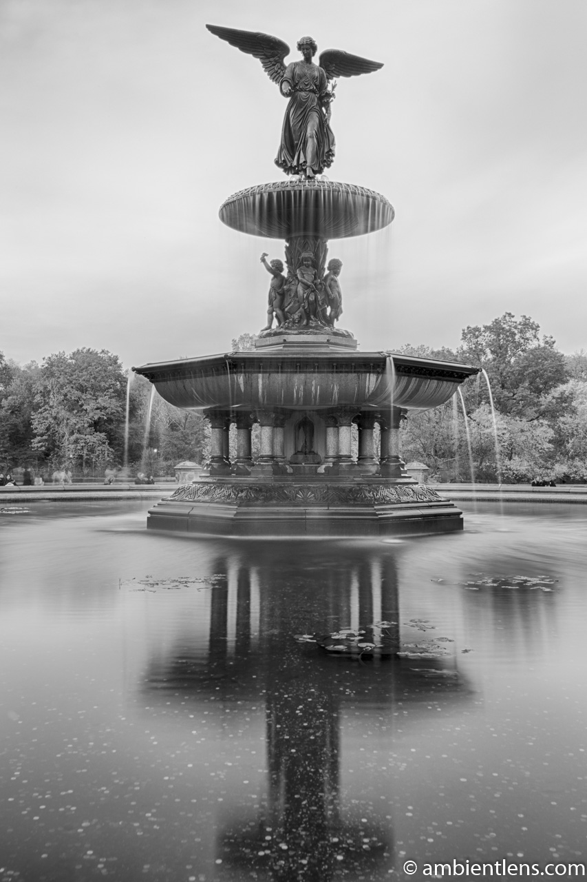 Bethesda Fountain Golden Autumn 2 (BW)
