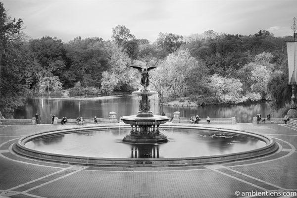 Bethesda Fountain Golden Autumn 3 (BW)