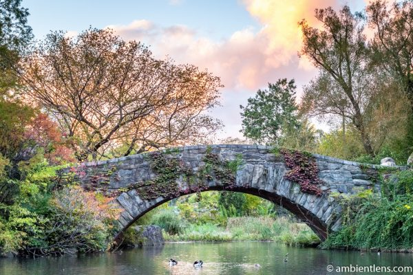 Gapstow Bridge and The Pond 2