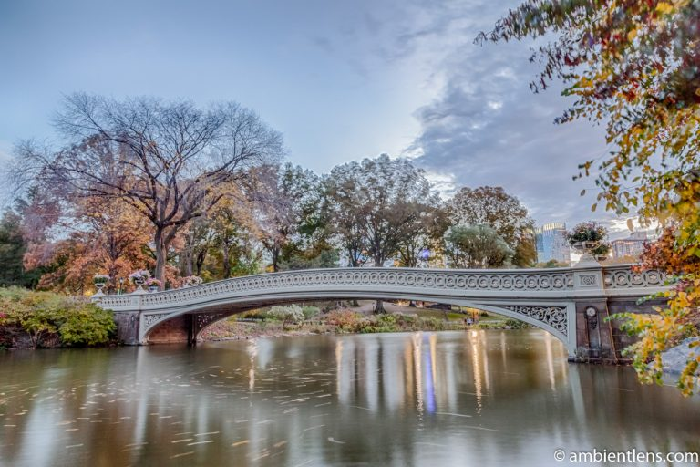 Bow Bridge in the Fall 2