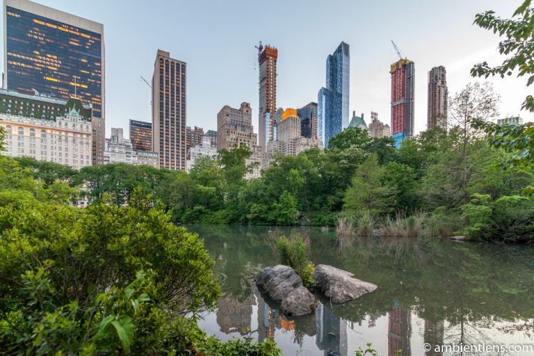 The Pond in Central Park, Manhattan, New York 1