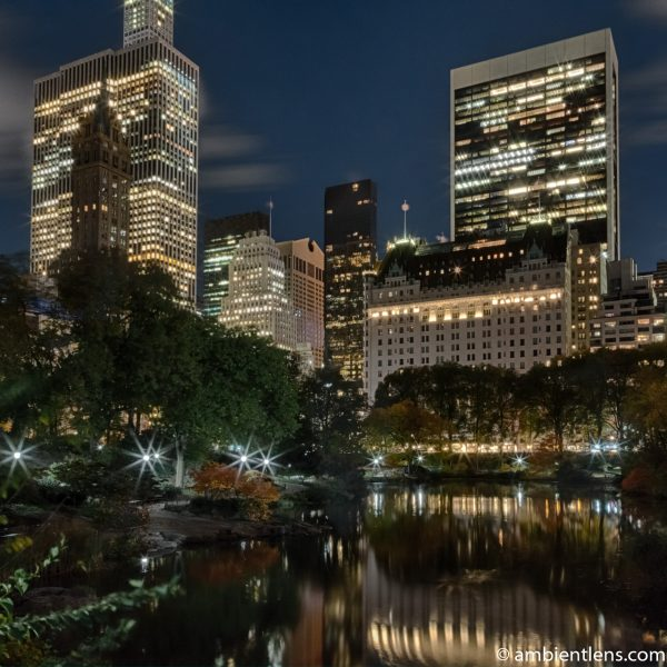 The Pond in Central Park at Night 1 (SQ)