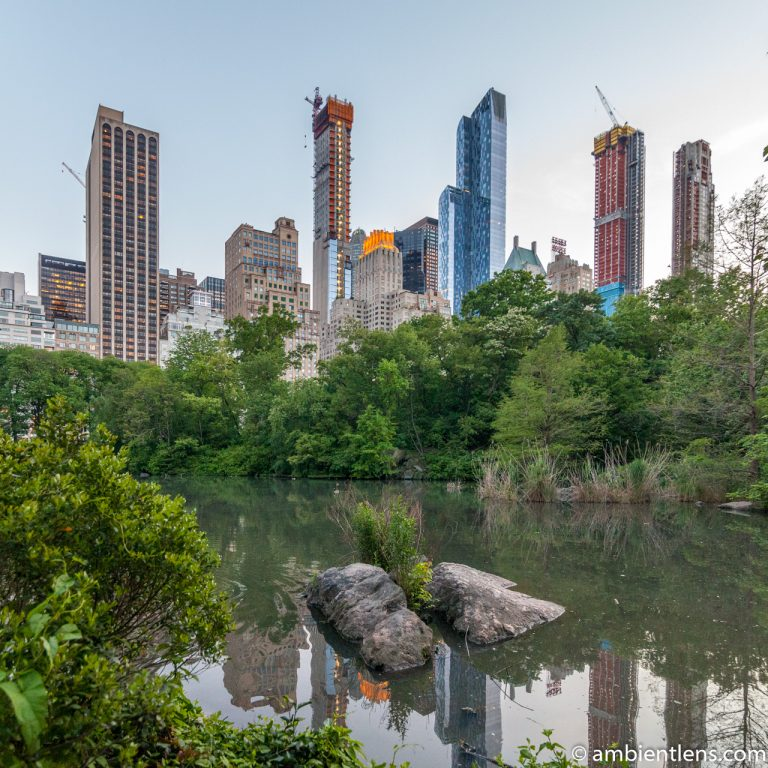 The Pond in Central Park, Manhattan, New York 1 (SQ)