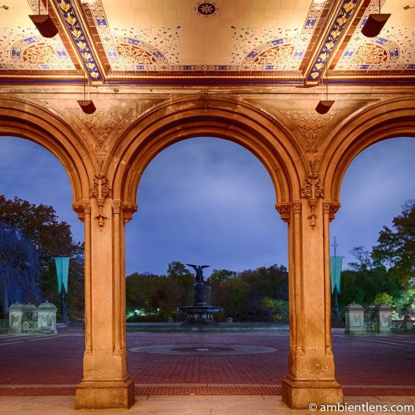 Looking Out Central Park's Bethesda Terrace (SQ)