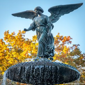 Bethesda Fountain Angel, Central Park, New York (SQ)