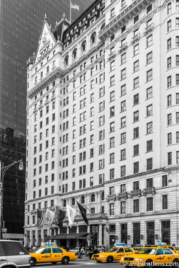 Yellow Cabs at the Plaza Hotel, New York 1
