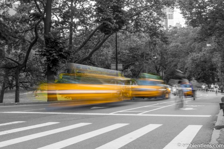 Yellow Cabs in Central Park, New York 2