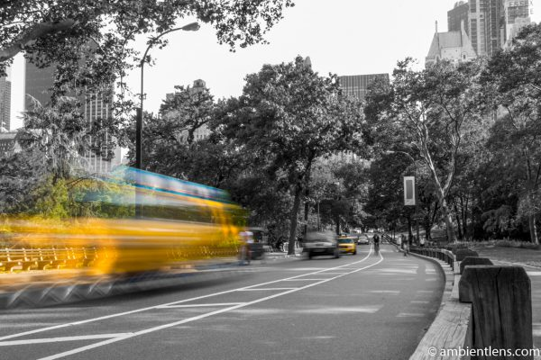 Yellow Cabs in Central Park, New York 4