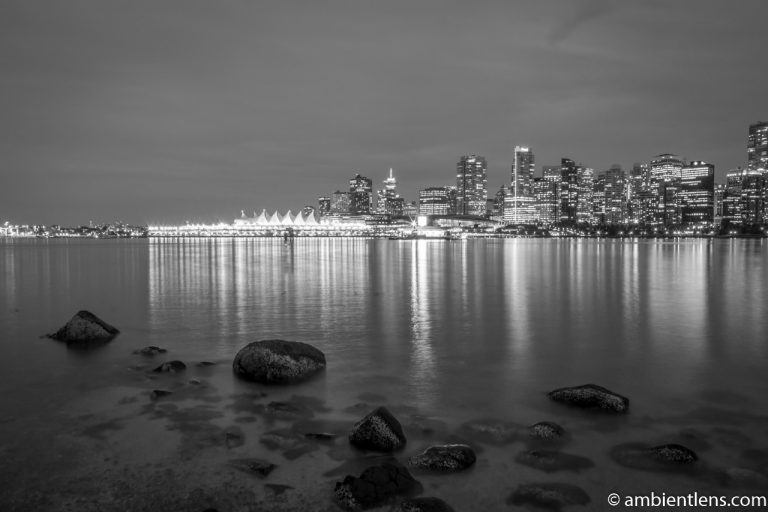 Downtown Vancouver at Night 2 (BW)