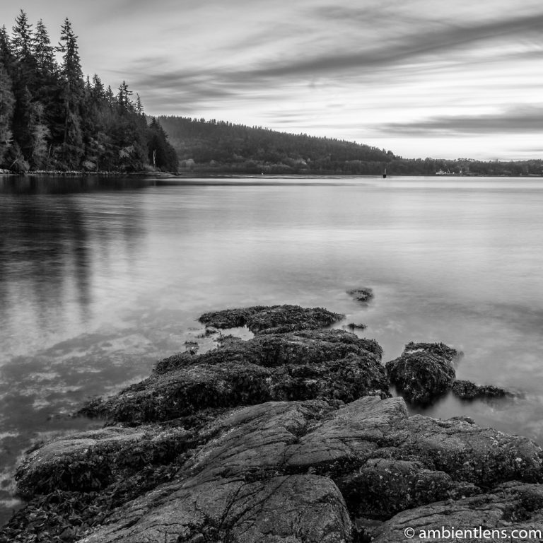 The Beach at Belcarra Regional Park, Anmore, BC 2 (BW SQ)