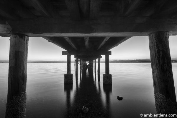 The Pier at Crescent Beach, White Rock, BC, Canada 7 (BW)