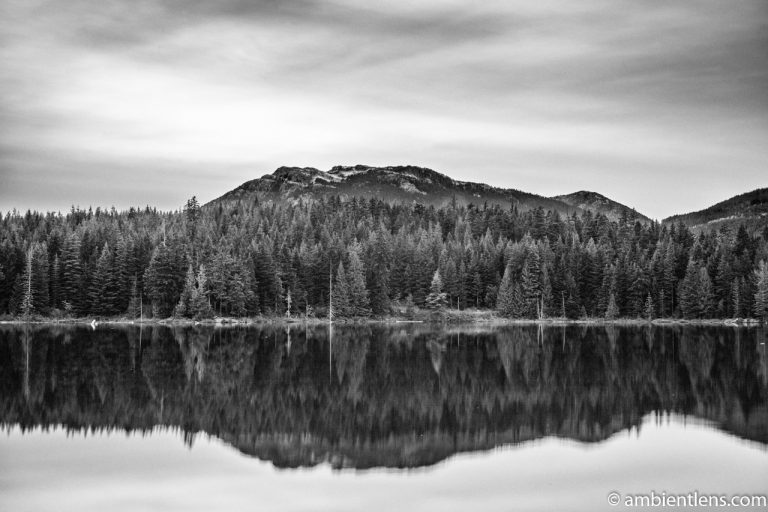 Lost Lake, Whistler, BC, Canada 3 (BW)