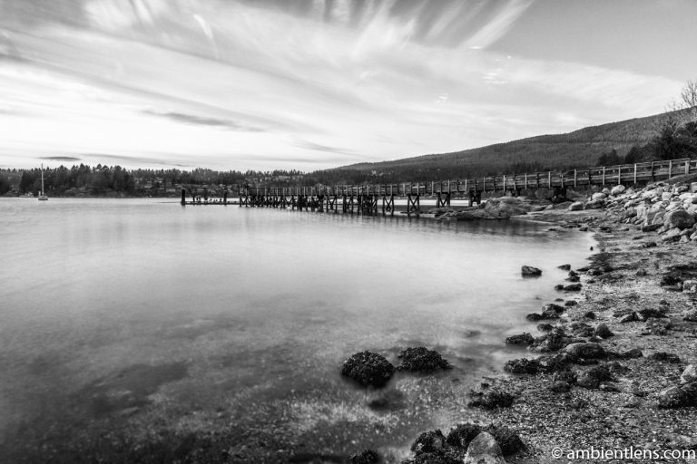 The Dock at Belcarra Regional Park, Anmore, BC 5 (BW)