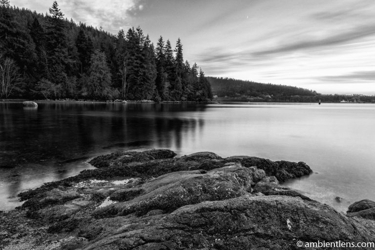The Beach at Belcarra Regional Park, Anmore, BC 3 (BW)