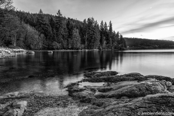 The Beach at Belcarra Regional Park, Anmore, BC 1 (BW)