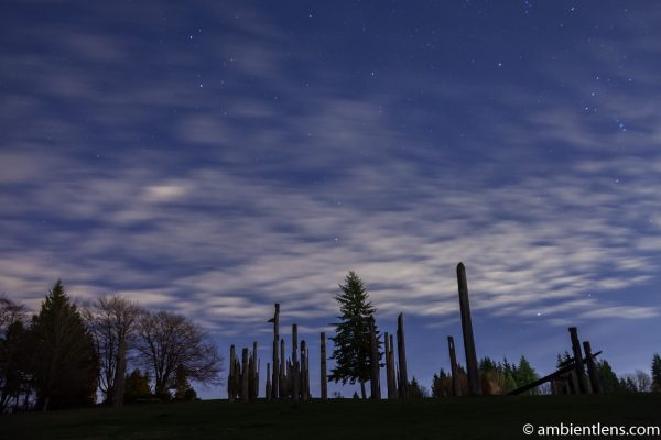 Playground of the Gods in Burnaby Mountain at Night