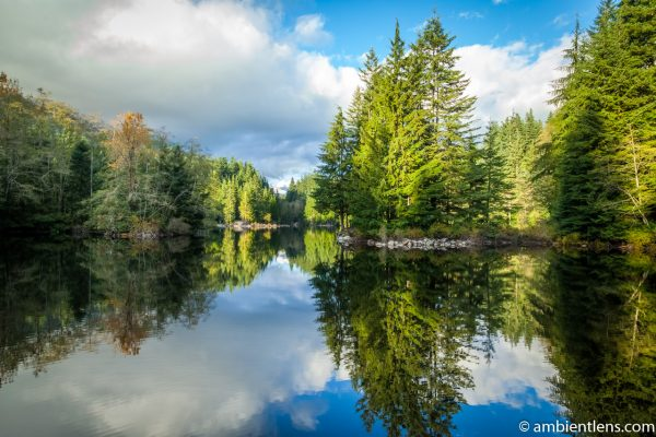 Rice Lake Reflection
