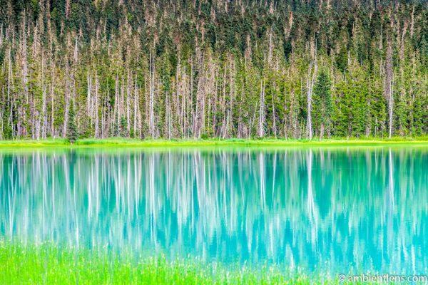 Joffre Lakes Reflection