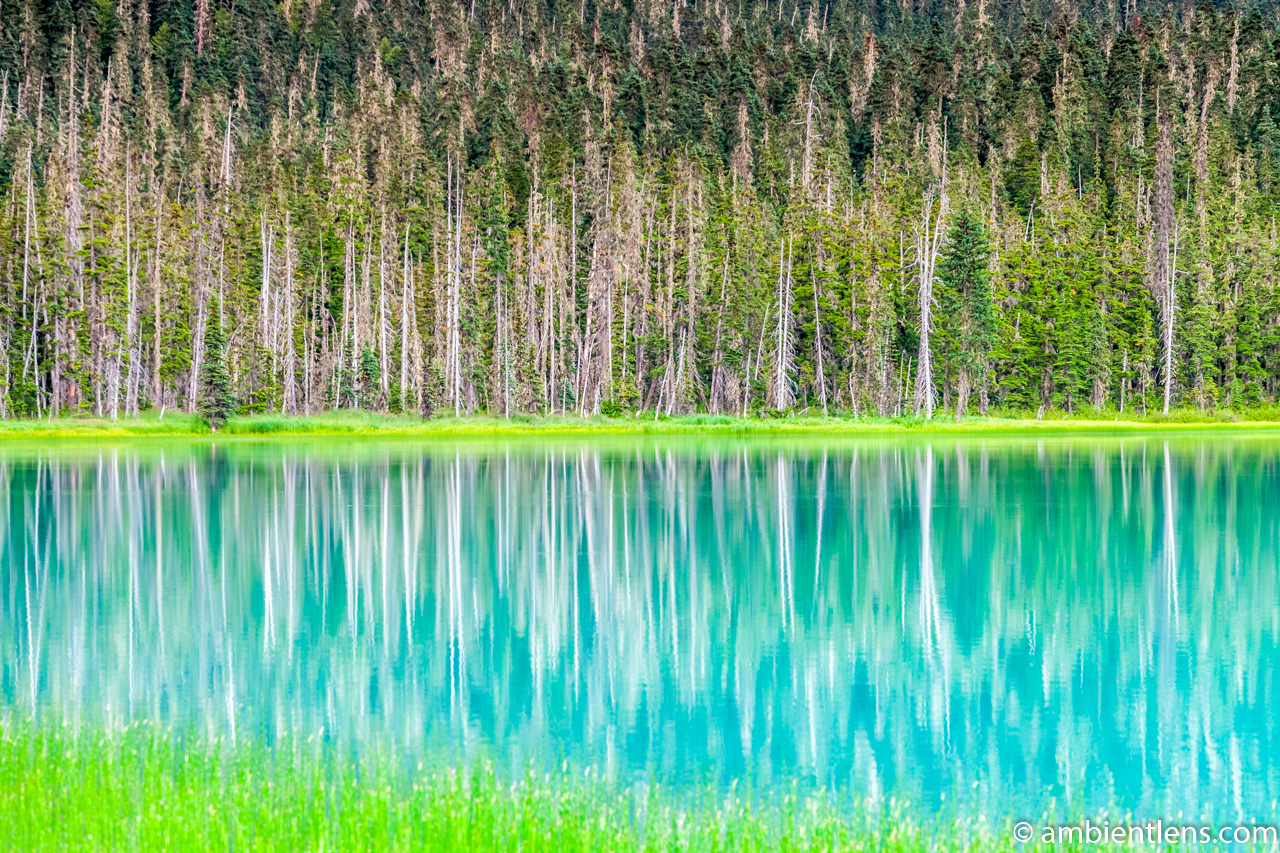 Joffre Lakes Reflection