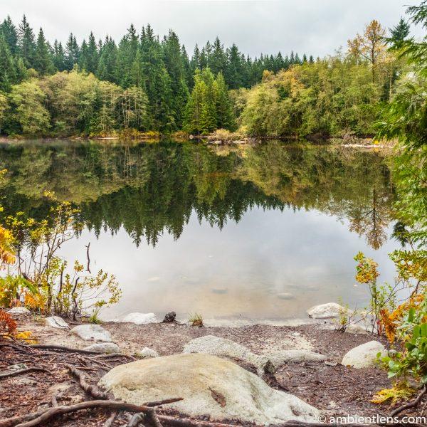 Rice Lake, North Vancouver, BC 6 (SQ)
