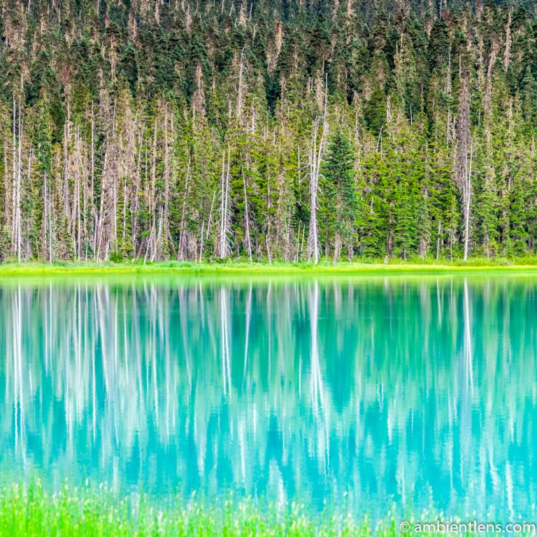 Joffre Lakes Reflection (SQ)