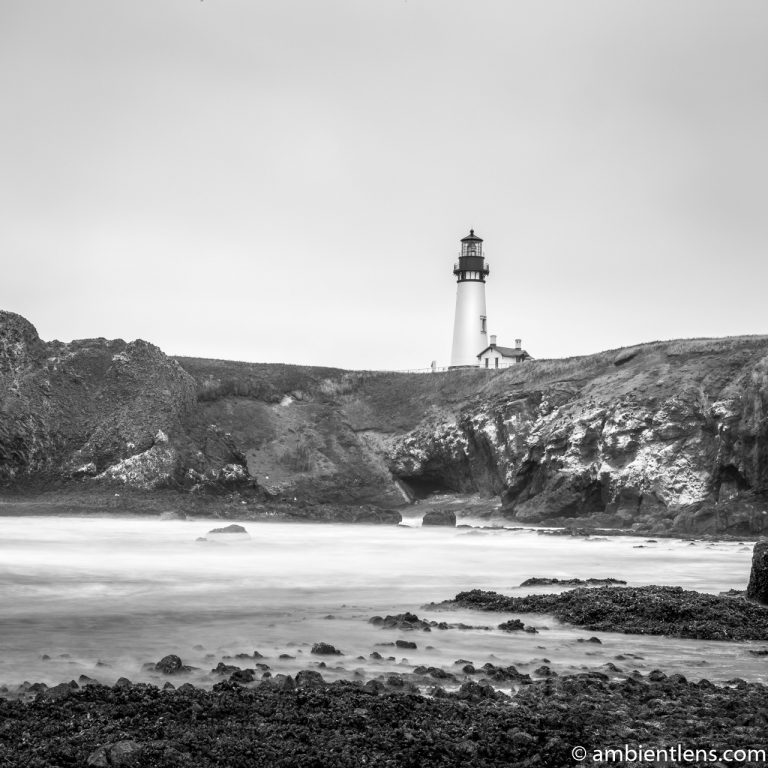 Yaquina Head Lighthouse 1 (BW SQ)