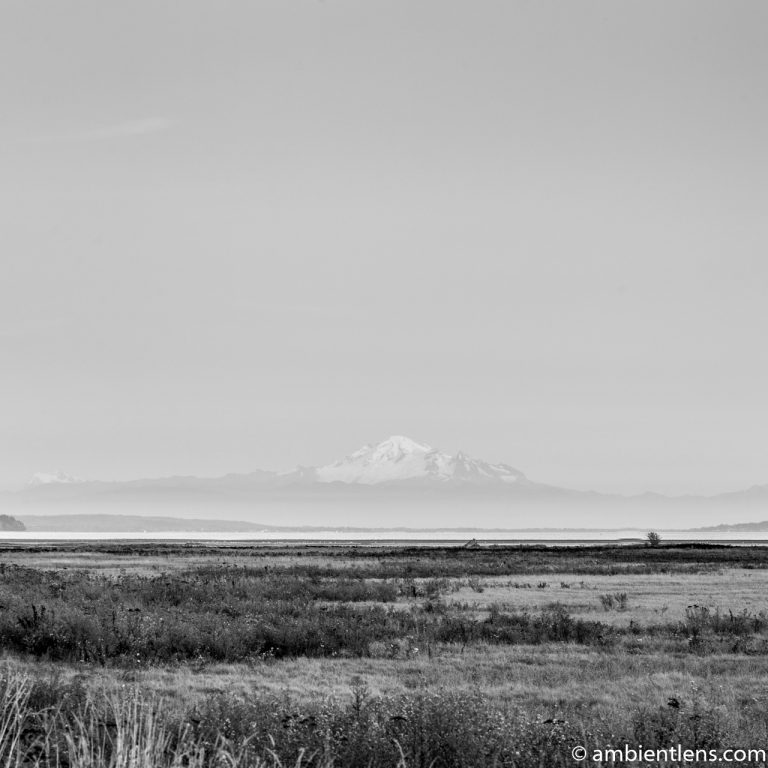 Mount Baker, Washington, USA 3 (BW SQ)