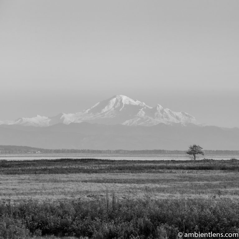 Mount Baker, Washington, USA 4 (BW SQ)