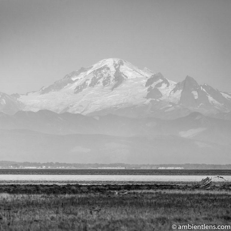 Mount Baker, Washington, USA (BW SQ)