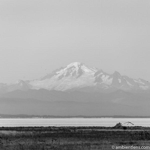 Mount Baker, Washington, USA 2 (BW SQ)