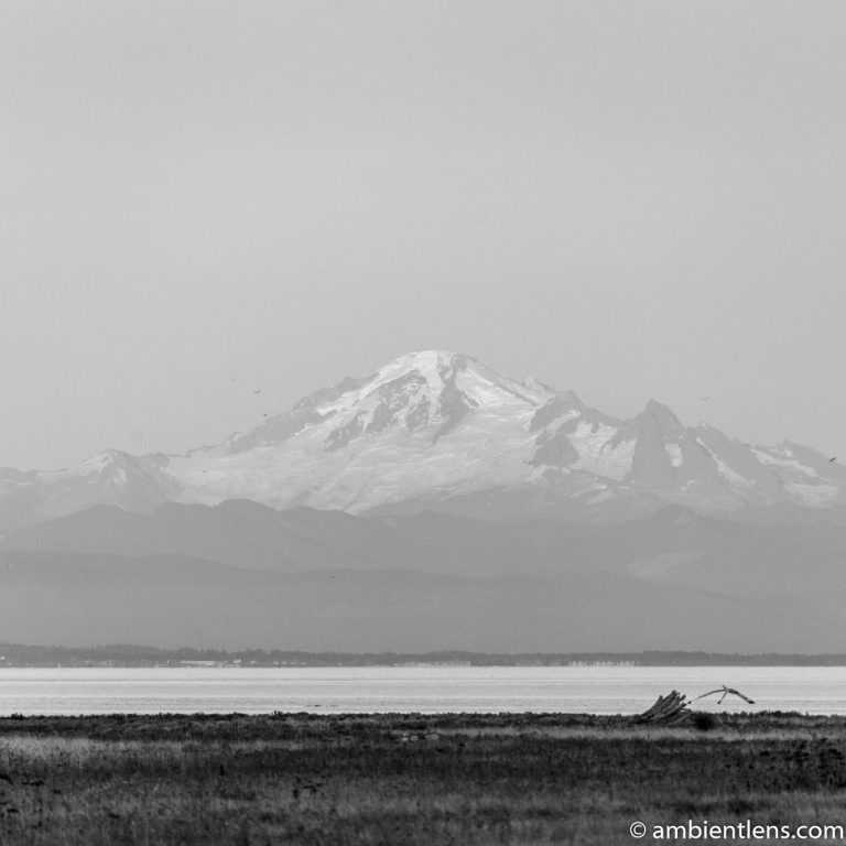 Mount Baker, Washington, USA 2 (BW SQ)