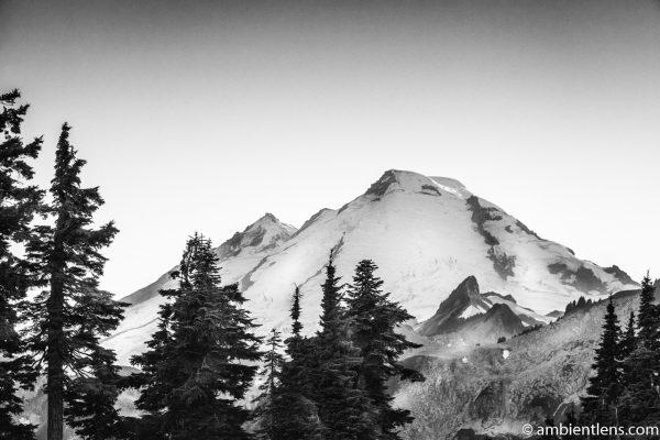 Tip of Mount Baker, WA (BW)