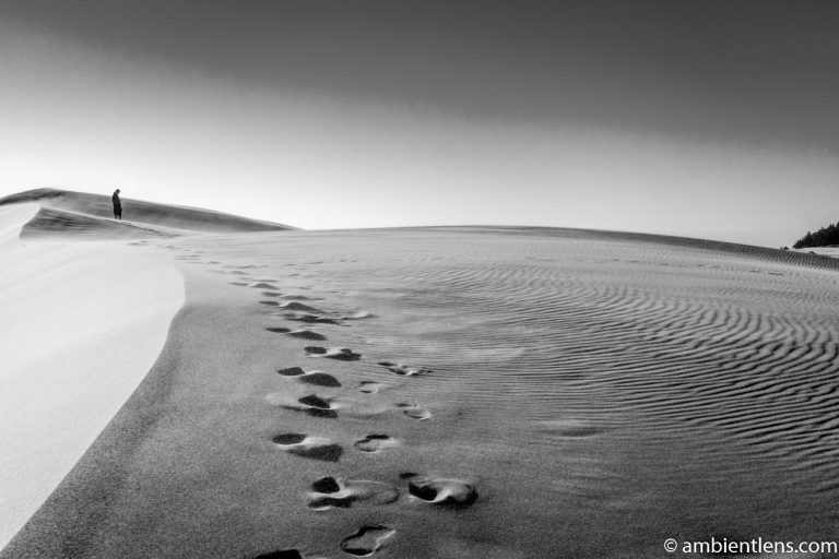 Crossing the Sand Dunes 1 (BW)