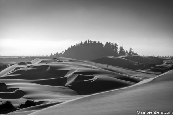 Crossing the Sand Dunes 2 (BW)