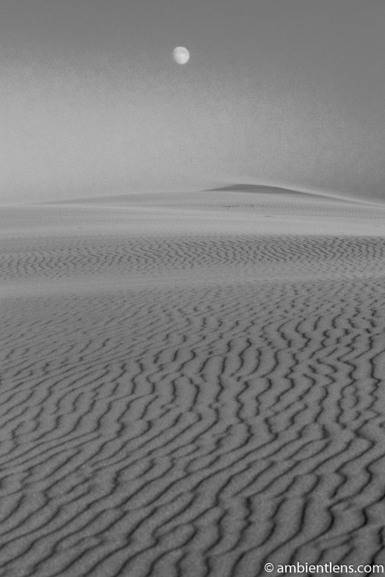 Moonrise Over the Oregon Dunes (BW)