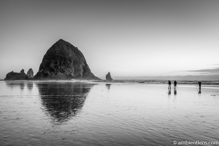 Haystack Rock Photographers 2 (BW)