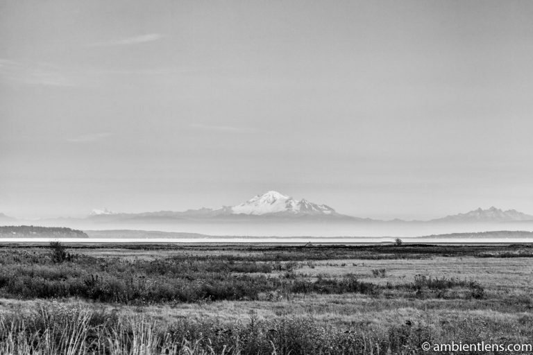 Mount Baker, Washington, USA 3 (BW)