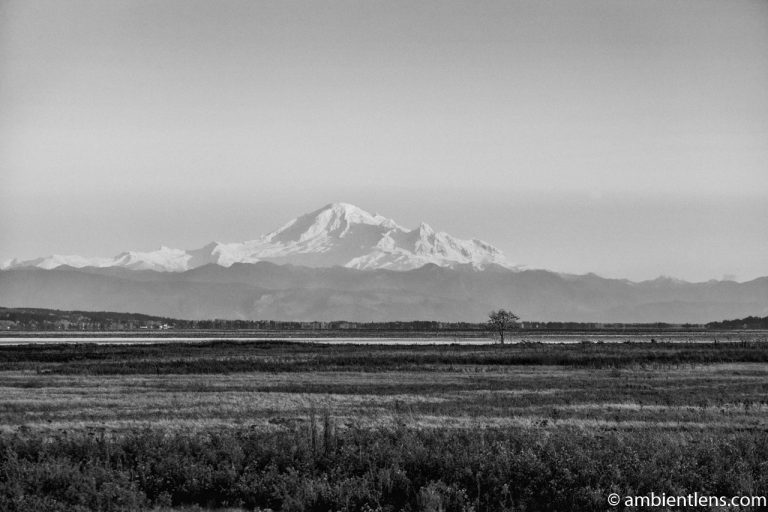Mount Baker, Washington, USA 4 (BW)