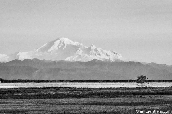 Mount Baker, Washington, USA 5 (BW)