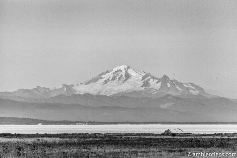 Mount Baker, Washington, USA 2 (BW)