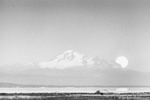 Mount Baker Moonrise 4 (BW)
