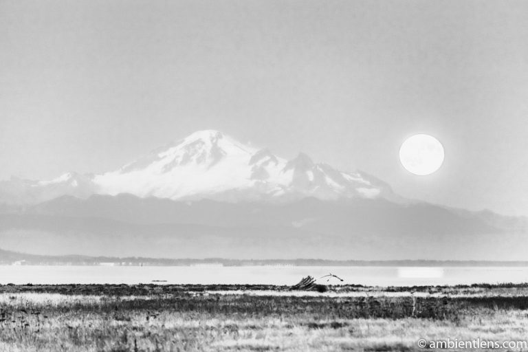 Mount Baker Moonrise 3 (BW)